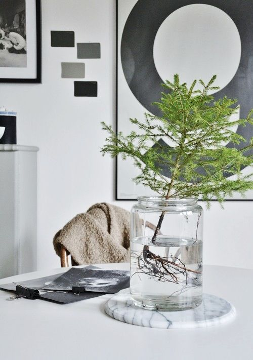 Photo: Hannas inspo simple tree branch in a jar of water. Lovely!