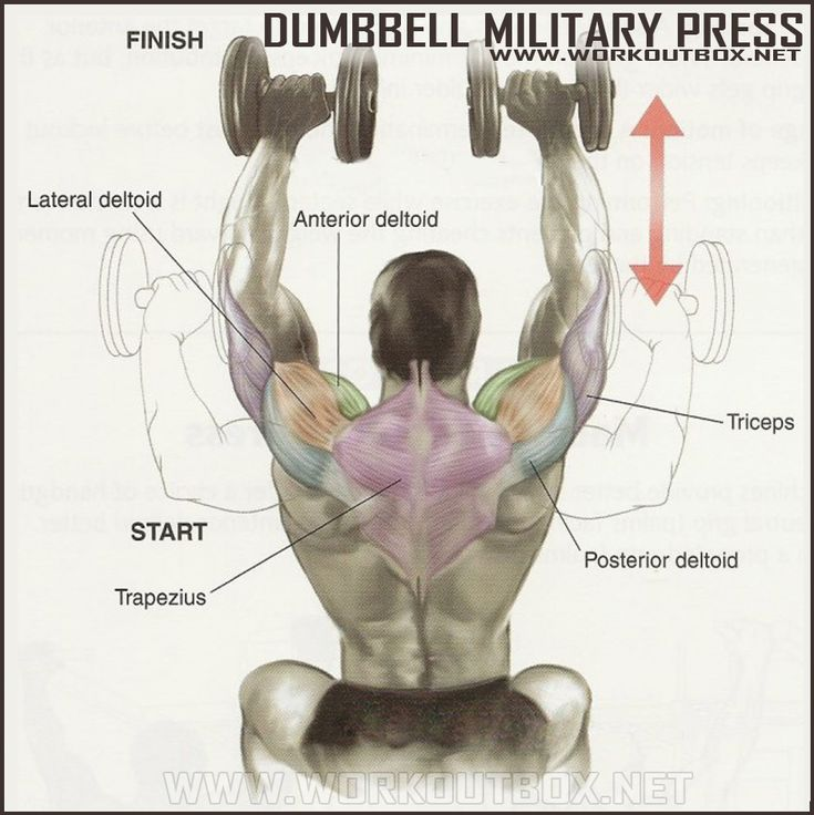 How To Dumbbell Military Press  With Images