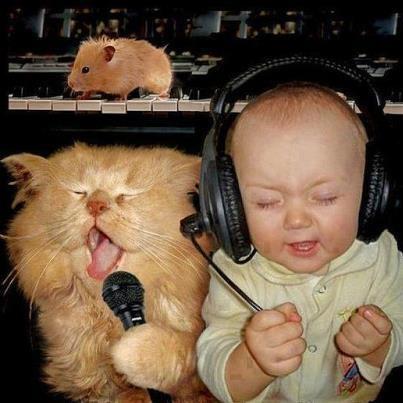 Interested in Karaoke ? Go to www.mediacom-me.com
