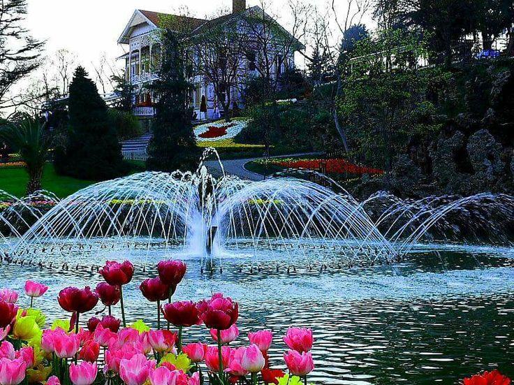 Емиргян,ботанический парк,Стамбул город Тюльпанов Фестиваль Тюльпанов в Стамбуле.Индивидуальные экскурсии по Стамбулу. www.russkiygidvstambule.com Info@russkiygidvstambule.com