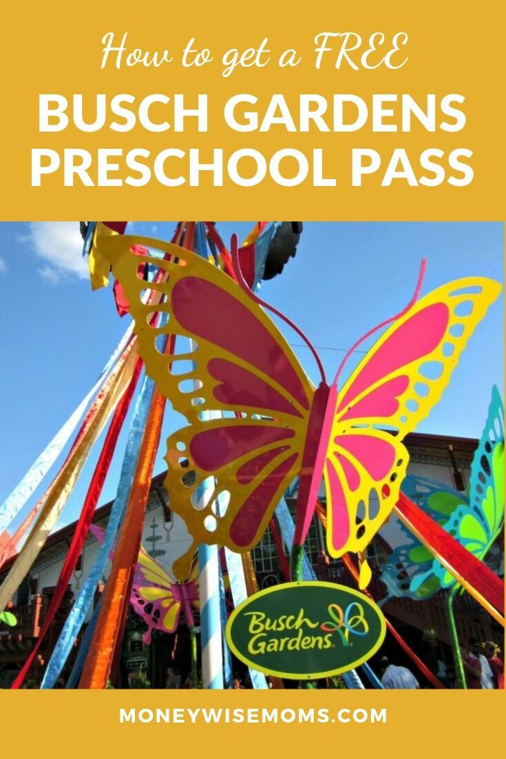 How to Get a Free Busch Gardens Preschool Pass 2020  Busch gardens, Busch gardens tampa, Preschool