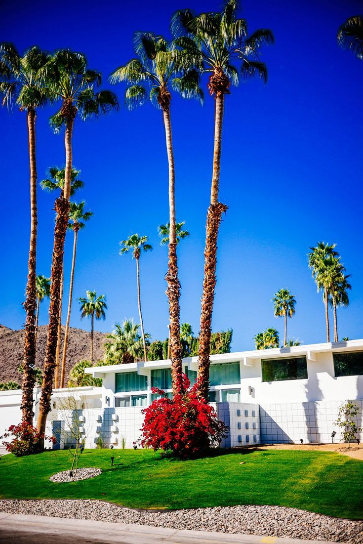 We Love These Homes Tour The Beautiful Mid Century Homes In Palm Springs The Taste Sf Decor Midcentury Palm Springs Palm Springs Style Spring Architecture