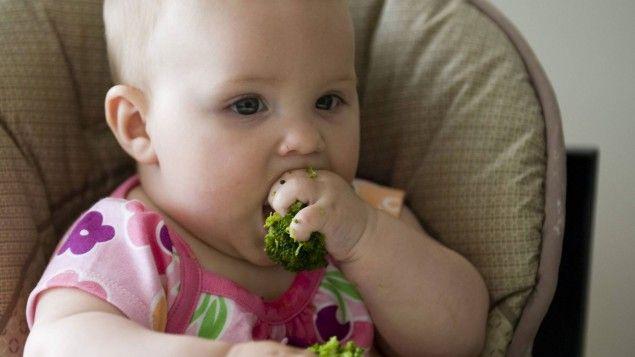 """Sollen Babys mitentscheiden dürfen, was sie essen, nachdem sie entwöhnt sind? Der Berufsverband der Kinder- und Jugendärzte warnt vor Nährstoffmangel. Udo Pollmer hingegen meint: Kinder brauchen vor allem eins: """"unbefangene Freude am Essen""""."""