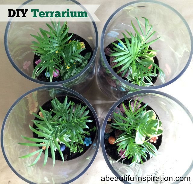 DIY Terrarium Tutorial! I absolutely love these terrariums and how great they look in my house. #DIY #Terrarium #tutorial