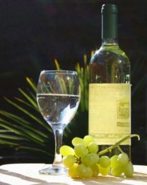 No Carb Alcoholic Drinks for Atkins and South Beach Diets - Yahoo! Voices - voices.yahoo.com