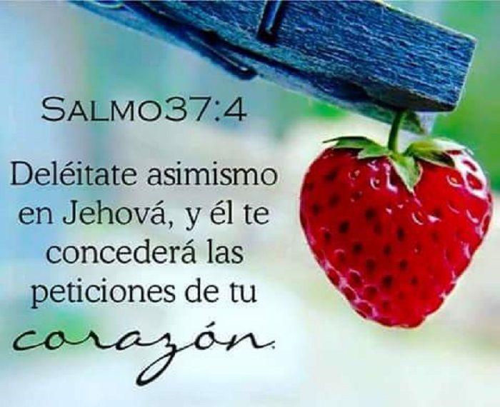 Deleitate asimismo en Jehová, y el te concederá las peticiones de tu corazón…