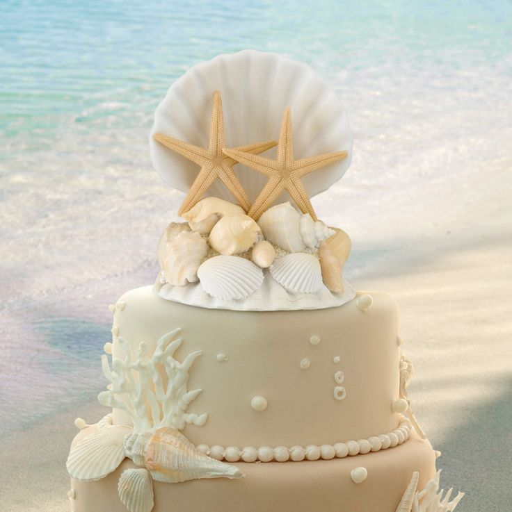 "This resin seashell cake top makes the perfect decoration for destination or beach-themed weddings. Size: 4"" wide, 5"" tall."