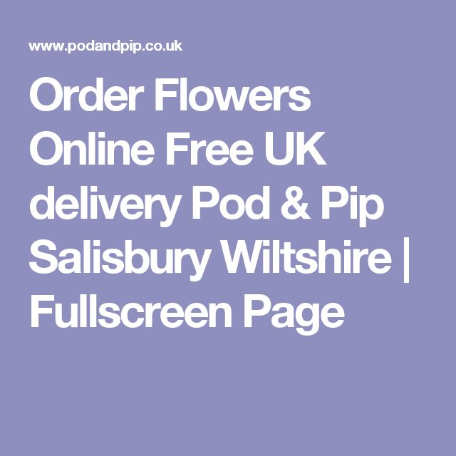 Order Flowers Online Free UK delivery Pod & Pip Salisbury Wiltshire | Fullscreen Page