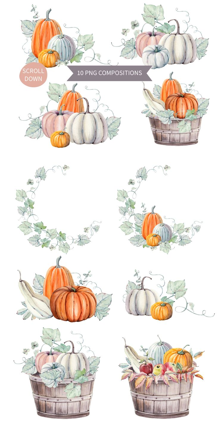 Hello Pumpkins watercolor set by Lemaris on @creativemarket