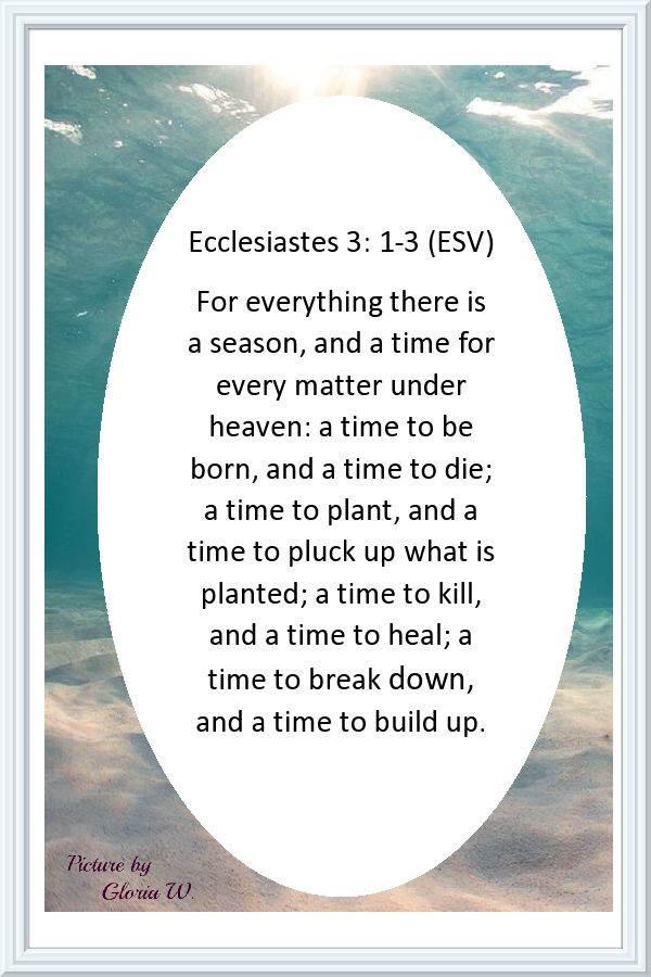 Ecclesiastes 3 1 3 Esv For Everything There Is A Time Ecclesiastes Ecclesiastes 3 Song Of Solomon