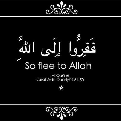 """Flee to Allah"""