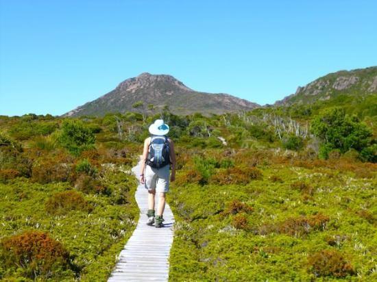 Hartz Mountains National Park, 30 mins from Hobart