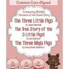 This folklore unit is centered on Common Core Standard RL.2.9, compare and contrast two or more versions of the same story.    I have chosen to foc...