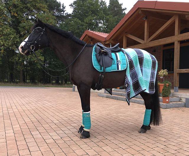 wunderschön♥️ #Eskadron #Eskadronsuchti #Kollektion #Pferdetrends #Equinelove #Equestrian #Equestrianism #Horse #Liebe #Love #Riding #Reitsport
