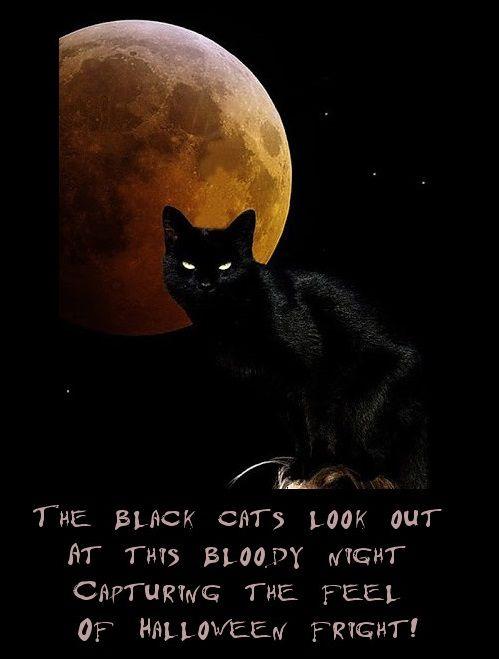 halloween poems humorous