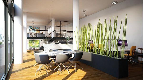 Planten in kantoorruimte
