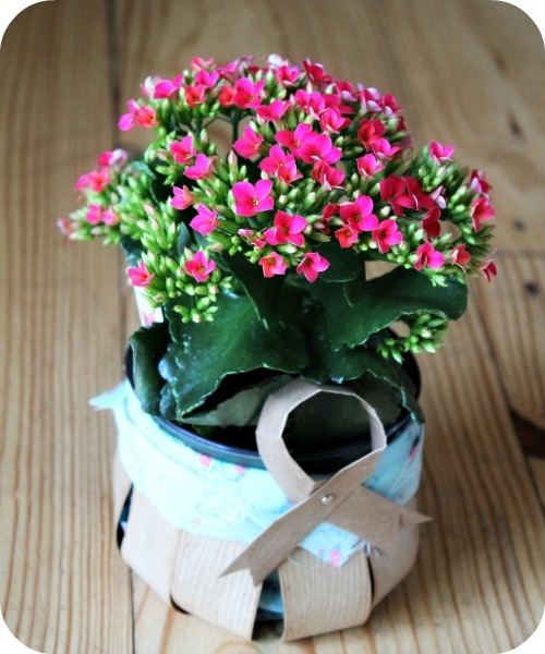 24 best hoppy easter images on pinterest green gifts hoppy recycled grocery bag easter basket project tutorial host giftsgrocery negle Choice Image