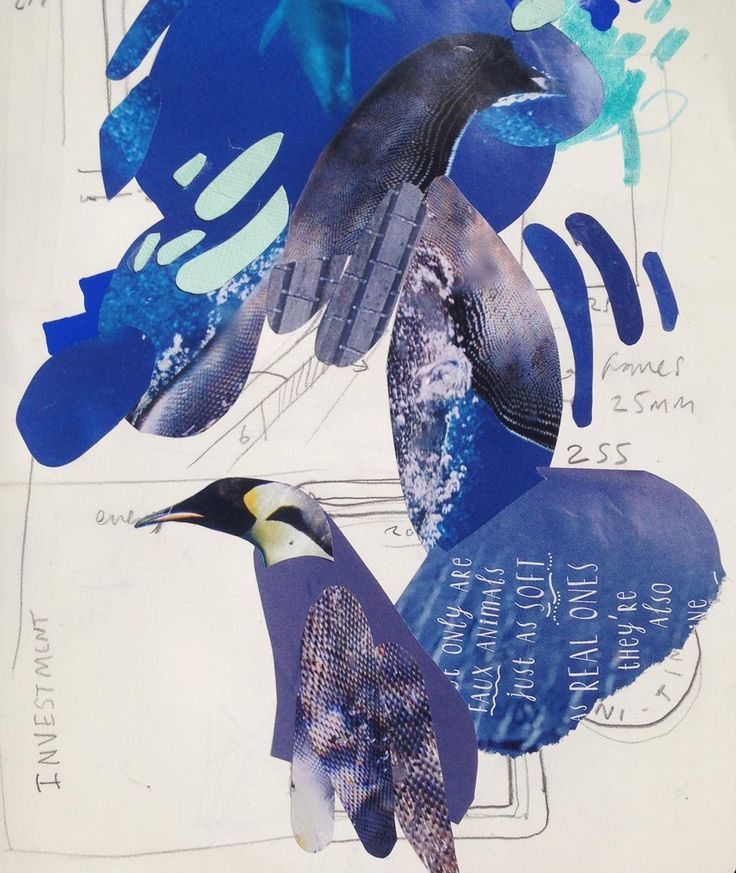#morningcollage #collage #penguins #nationalgeographic