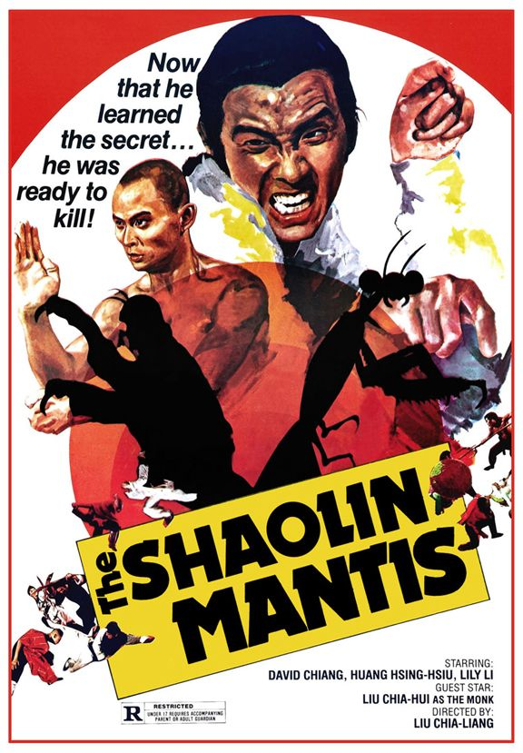 51 best kung fu movies images on pinterest kung fu