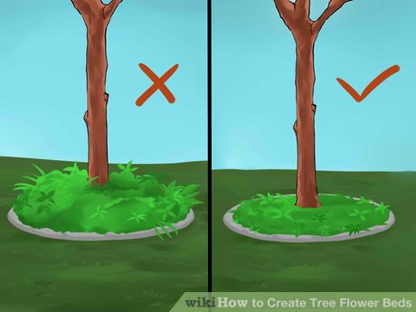 Image titled Create Tree Flower Beds Step 6