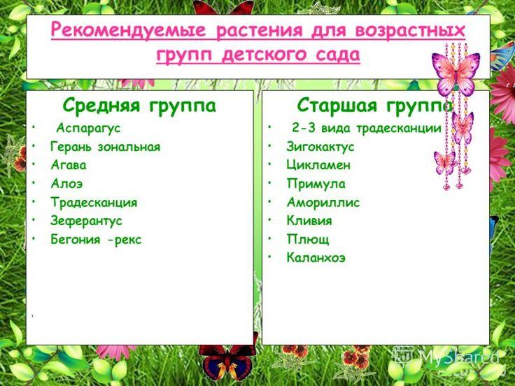 slide_12.jpg (800×600)