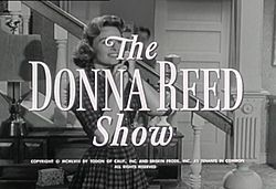 The Donna Reed Show...Debut in 1958- watched reruns as a kid-still makes me old!