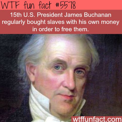 James Buchanan - A FINE EXAMPLE FOR POTUS!  ~WTF awesome fun facts