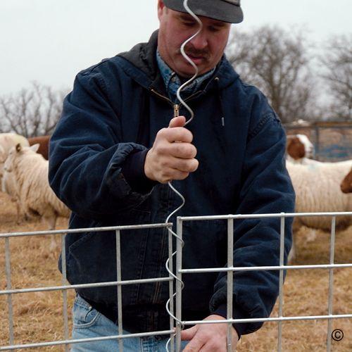 778 Best Goat Farm Images On Pinterest: Best 25+ Cattle Barn Ideas On Pinterest