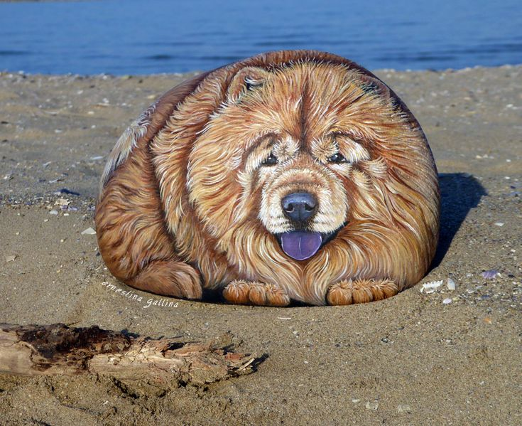 Chow chow, hand painted on stone by Ernestina Gallina, Pietrevive rock art. https://www.facebook.com/pietrevive.ernestina/ https://www.etsy.com/shop/LivingRocks