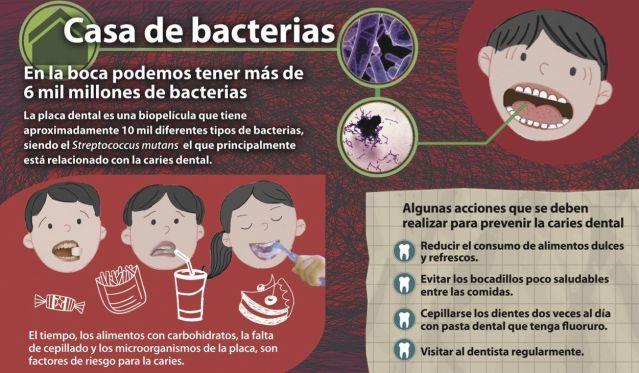 La #caries, responsable de la pérdida dental #Infografia @PublimetroMX