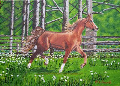{#horse, #oiloncanvas, #painting, #art}  club del verde vescica                                       : Dipingere UN CAVALLO