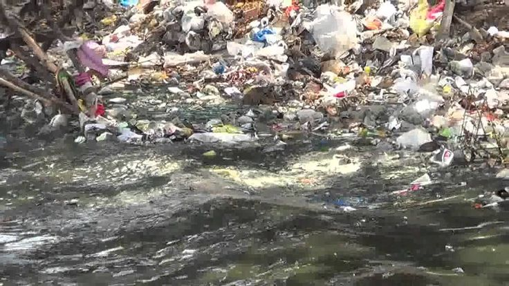 Garbage Pollution in Water, Facts about India - YouTube