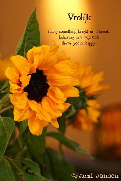 Fine Art Photography sunflower floral door theimperfectartistNL