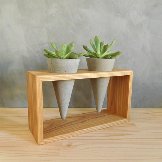 Live succulents and cacti decorative planters set of two concrete planter cones on plant stand wood of chestnut, easter table centerpiece