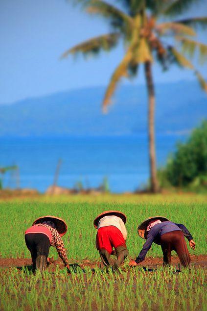 West Java   Indonesia