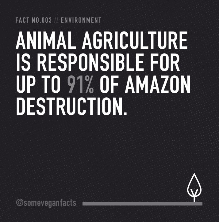 Some Vegan Facts - Fact 003. Source // http://www.cowspiracy.com