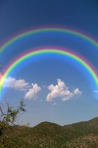 Double rainbows In a primary rainbow, the arc shows red on the outer part, and…
