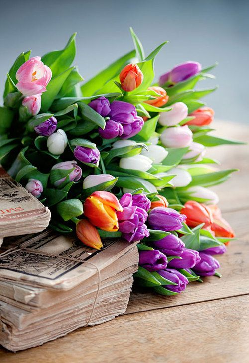 flowers: Summer Flowers, Spring Flowers, Tulip, Bouquets, So Pretty, Fresh Flowers, Photo, Colors Flowers, Old Books