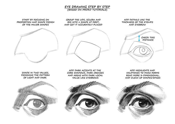 How to Draw Eyes: Top: Drawing Cutting Edge Comics by Christopher Hart Row 2 Left, , Middle, Right Row 3 Row 4 Left, Right Row 5 Left (Figure Drawing for All it's Worth, by Andrew loomis), Right Row 6