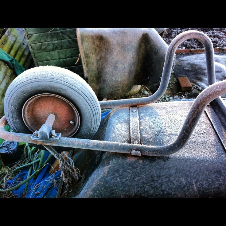 Wheelbarrow on a frosty day.