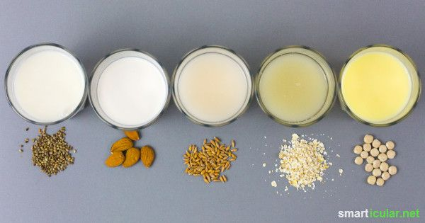 Immer nur Sojamilch? Mit diesen 13 Pflanzenmilch-Rezepten bringst du Abwechslung in deine hauseigene Auswahl selbst gemachter Milchalternativen!