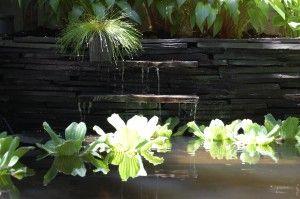 waterfall into pond: Appearances Waterfalls, Waterfalls Features, Backyard Patio, Backyard Ponds, Ponds Waterfalls, Gardens, Backyard Fish, Small Waterfalls, Minis Waterfalls