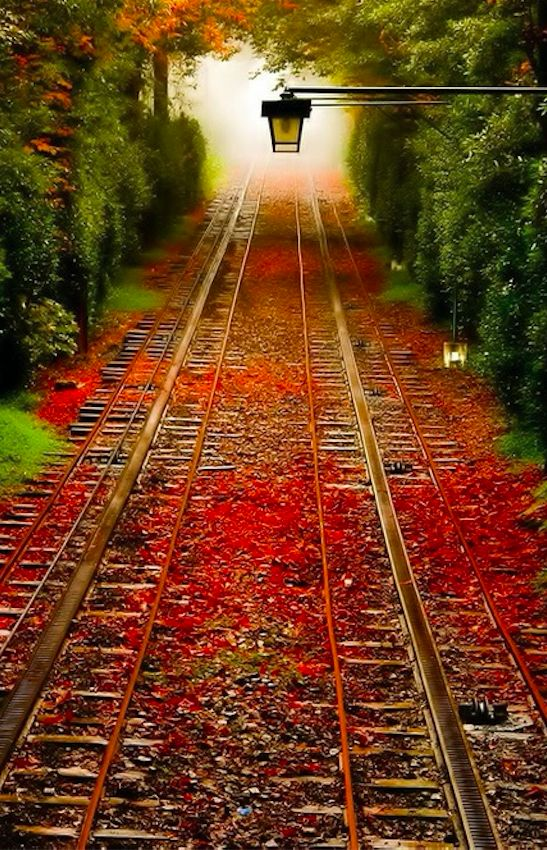 Autumn trains tracks in Pennsylvania • original source not found