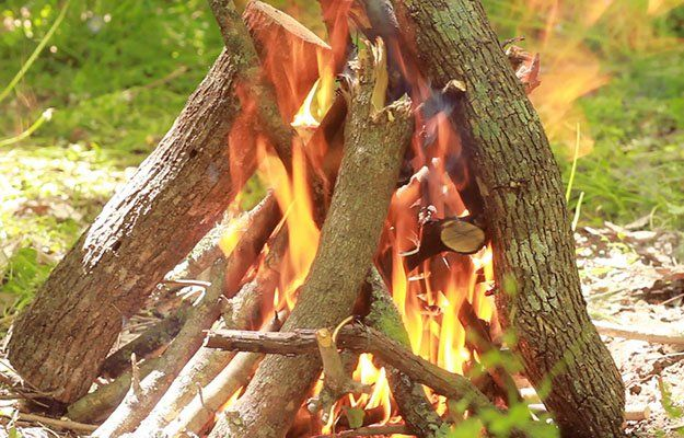 naturalism in to build a fire Jack london to build a fire essays - naturalism in jack london's to build a fire.
