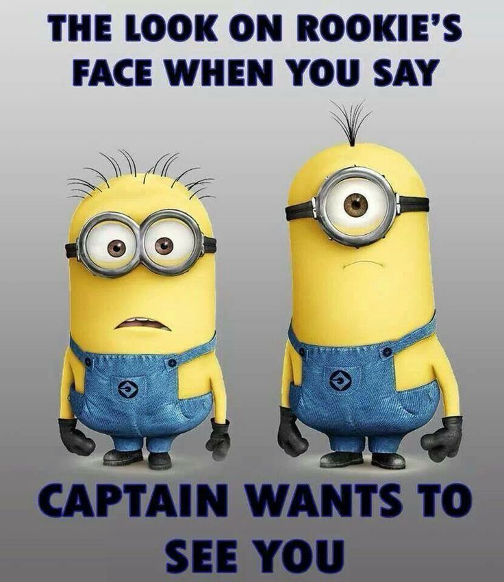 The look on a rookie's face when you say the Captain wants to see you.