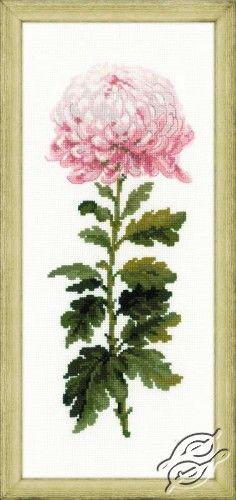 Gentle Flower - Cross Stitch Kits by RIOLIS - 1425