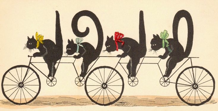 serious cyclists l vintage 1910 cats