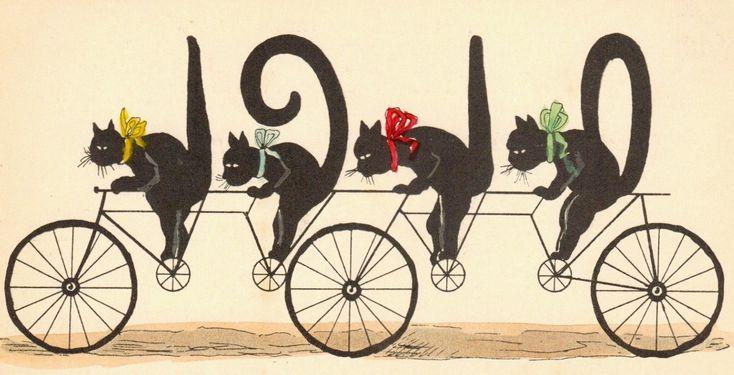 vintage kaart van,,fietsende katten, hoe leuk is dat nou,.........
