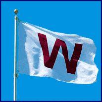 Banderas-publicitarias-baratas-venta-horizontal-comprar-don-bandera