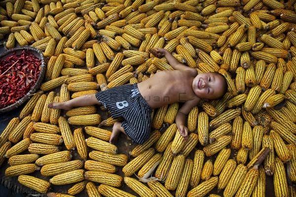 Rui Yuan's Boy in Maize
